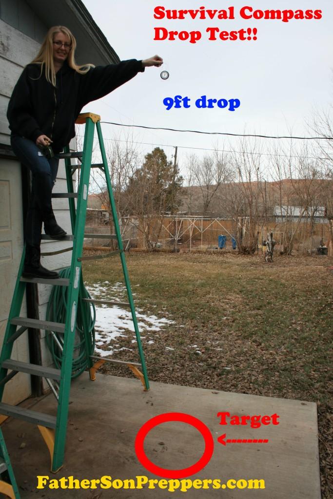 DropTestMainPGF
